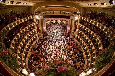 vyana opera teatrı 2